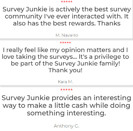 Survey Junkie Member Reviews