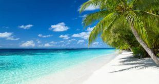 Win a Vacation Cruise in Caribbean