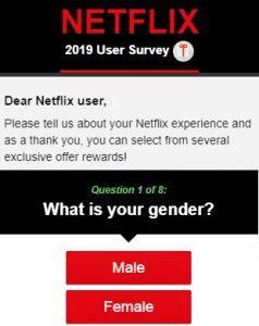 Netflix Survey