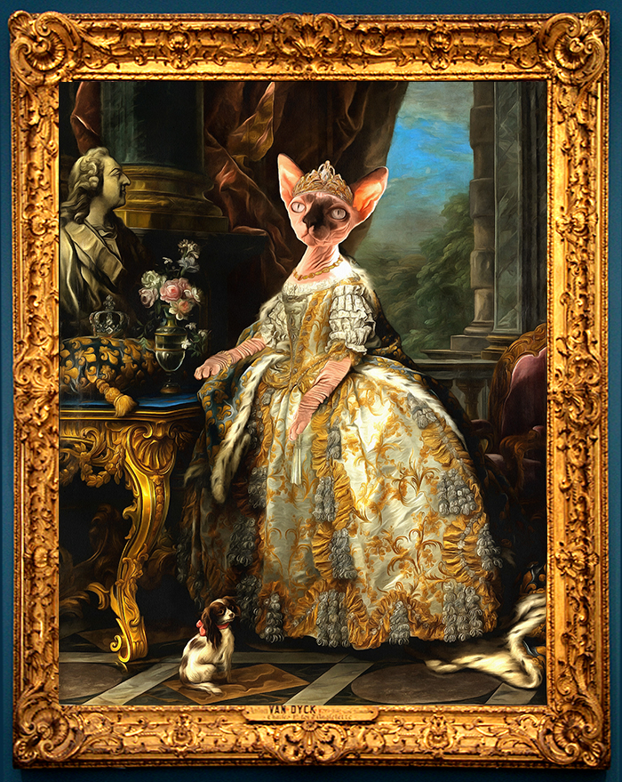 Royal cat portrait from photo